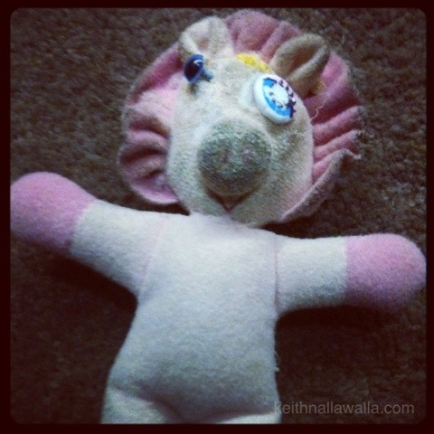 Pink dog toy with new eye